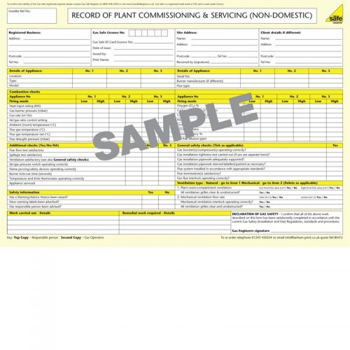 Plant Commissioning & Servicing – BM15